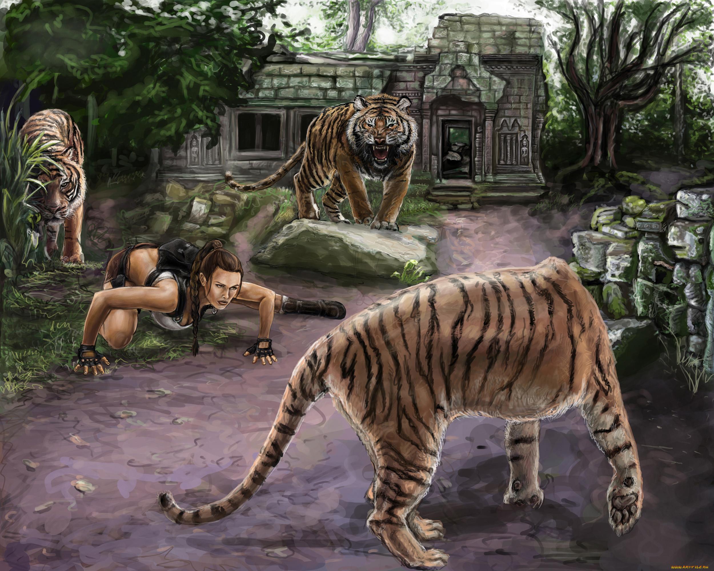 картинки тигров из игр иркутске при задержании